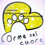Orme nel Cuore Onlus - Verona